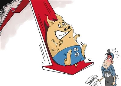 东北猪价再次全面上涨!7~8月或将是生猪缺口较大的时期.....